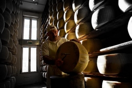 <h5>The Cheese Maker Tour	-  Click to Book a tour</h5><p>The Cheese Maker Tour	    Book a tour today																																																																																																																																																																																										</p>