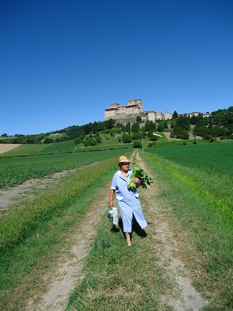 Picture of the week - picking lunch at Langhirano
