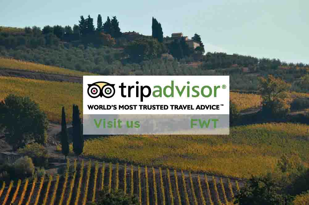 Dream Italy FWT on Tripadvisor