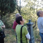 Food n Walk tours Parma food tour in the natural land