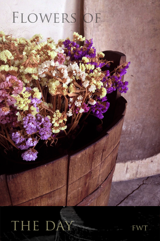 flowers-of-the-fwt-tours-parma-food